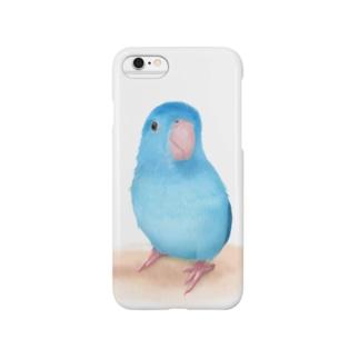 まめるりはことりのブルーマメルリハ【まめるりはことり】 Smartphone cases