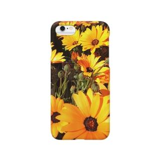 ディモルフォセカの花 Smartphone cases