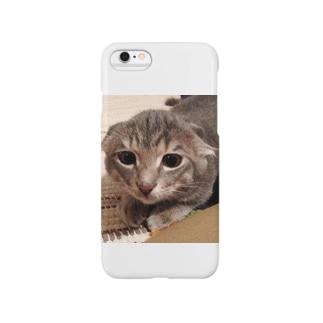 とらちゃぼんイカミミモドキ(コネコ) Smartphone cases