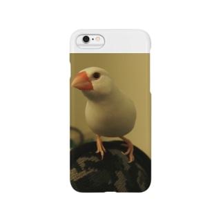 BUNCYO Smartphone cases