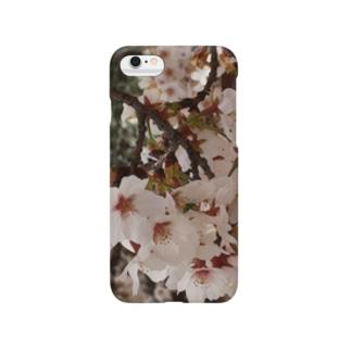 桜 サクラ cherry blossom DATA_P_152 春 spring Smartphone cases