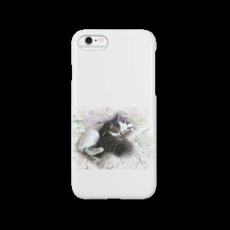 天野音色 癒し画像 healingのおねむネコ's Smartphone cases