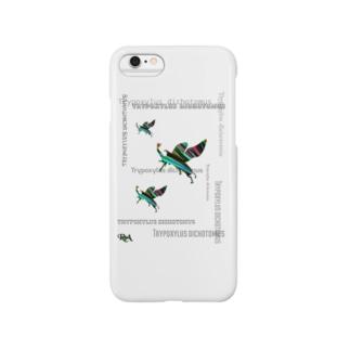 「夏以降も、カブトムシ」【tropics RA】 Smartphone cases