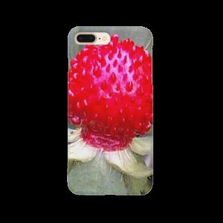 Dreamscapeの艶やかなおとずれ Smartphone cases