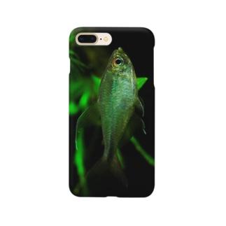 Hemigrammus filamentosus / male Smartphone cases