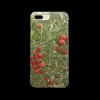 Masakiのミニトマト収穫前 Smartphone cases