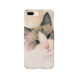 Ragdoll Smartphone cases