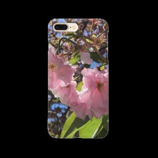 Jodlerin Sakura Kitagawa und die Edelweißmusikantenの花は咲く  2020  花シリーズ1 Smartphone cases