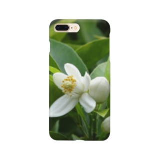 日本の花:ミカンの花 Japanese flowers: Mikan (Orange) Smartphone cases