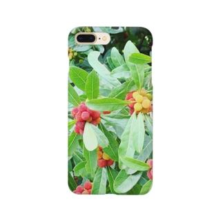 miyimの木の実 Smartphone cases