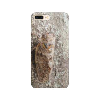 日本の昆虫:アブラゼミ Japanese large brown cicada Smartphone cases