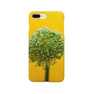 名前がわからない花 Smartphone cases