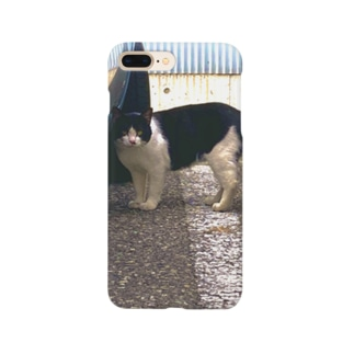 stray cat Smartphone cases