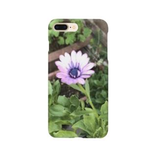 オステオスペルマム Smartphone cases