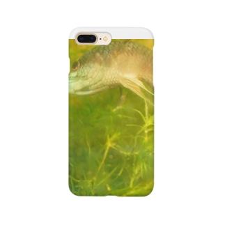 ククラスのワイルドベタ2 Smartphone cases