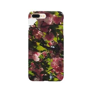 Kirschbaum 2 Smartphone cases