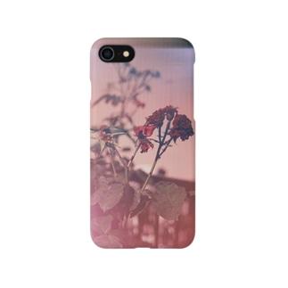 _ Smartphone cases