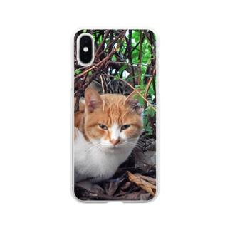 白茶ネコちゃん Soft clear smartphone cases
