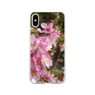 日本の花:ユスラウメ? Nanking cherry flowers (?) Soft clear smartphone cases