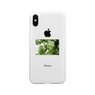 ソフトクリーム屋さんの水も滴るいい葉っぱ Soft clear smartphone cases
