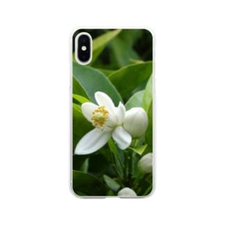 日本の花:ミカンの花 Japanese flowers: Mikan (Orange) Soft clear smartphone cases
