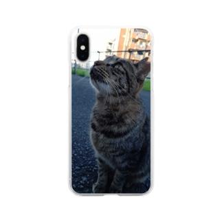 とらちゃん type.B Soft clear smartphone cases