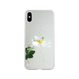 秋明菊 Soft clear smartphone cases
