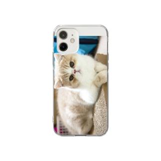 photo-tkのくつろぎちまき君 Soft Clear Smartphone Case