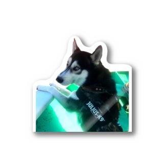 Husky'S Herb Gardenの船乗りハスキー Sticker