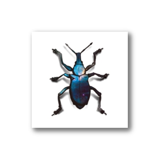 Cosmo Weevil Stickers