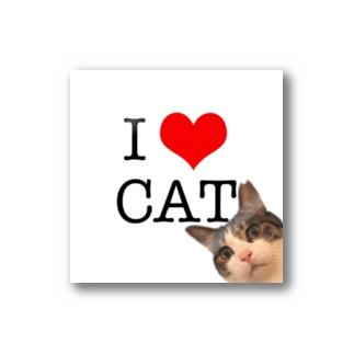 I♡CAT Stickers