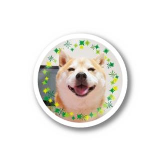 豆柴ビーン丸ワッペン Stickers