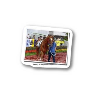 馬イラスト008[写真風] 緊張の一瞬 Stickers