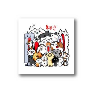 集団猫 Stickers