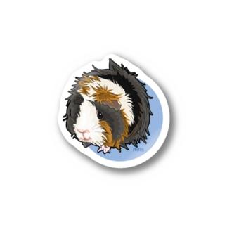 アビシニアンモルモットのモルちゃん Stickers
