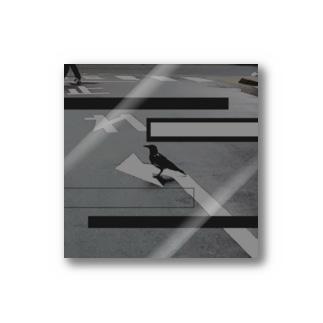 Black bird Stickers