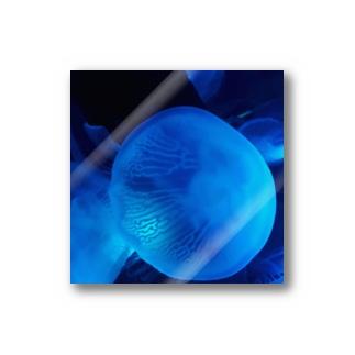 jellyfish#3 Stickers