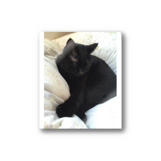両耳黒猫 Stickers