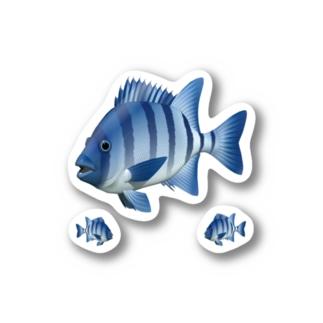 イシダイ_2_ST Stickers
