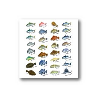 SAKANA_SB1_ST Stickers
