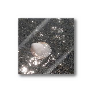 海と貝と Stickers