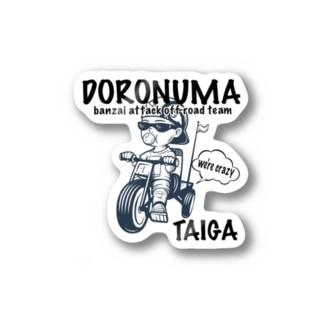 TAIGA Stickers