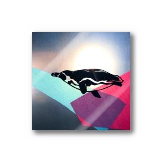 泳ぐペンギン Stickers
