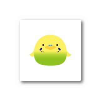 まんまる 緑のインコちゃん Stickers