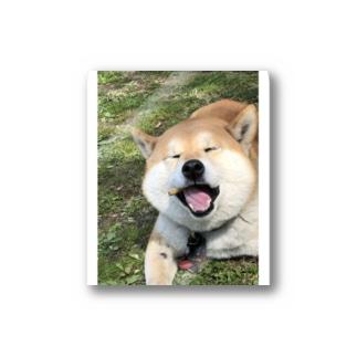 HARUおめ Stickers