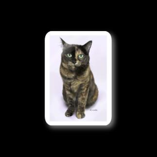 kinako-japanのサビ猫のキューちゃん Stickers
