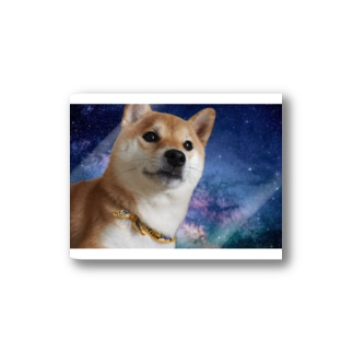 space dog Stickers