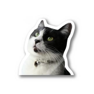 マルさん Stickers