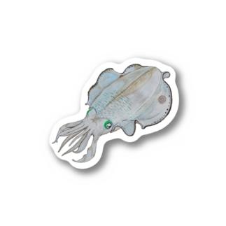 Aori-ika 【fishing style】 Stickers