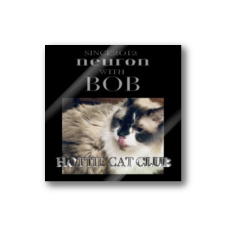HOTTIE CAT CLUB 〜BOB〜 Stickers